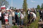 Rośnie aleja Pamięci Narodowej w Zułowie na Litwie