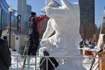 Snow Days 2013 w Chicago