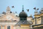 Polsko-amerykańskiej hybrydy podróże do kraju - część 2