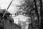 66 rocznica wyzwolenia Auschwitz