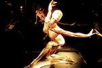 """Niezwykła wystawa """"BodyWorlds"""" w Chicago"""